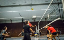 Volleyball (hiver)