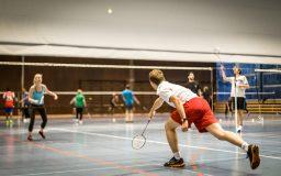 Badminton (tournoi)