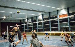 Volleyball (tournoi)