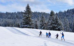 Ski de fond, skating